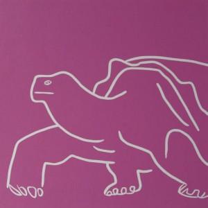 Tortoise - Linocut, dark pink ink, by Jane Bristowe