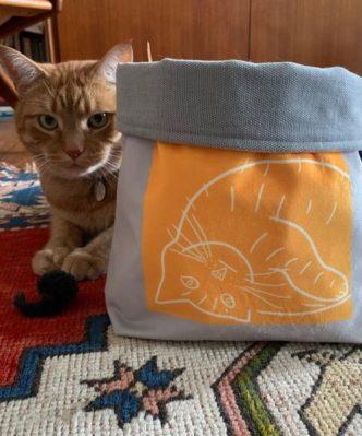 Cat Bag photo Ginger Cat + Louis