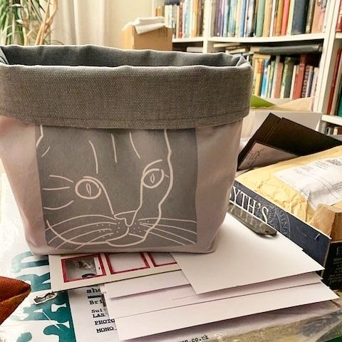 Cat Bag Grey Cat photo